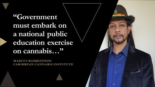 Image result for trinidad expert on international cannabis regulations marcus ramkisson